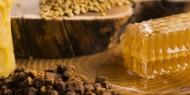 Própolis: o ouro verde da medicina